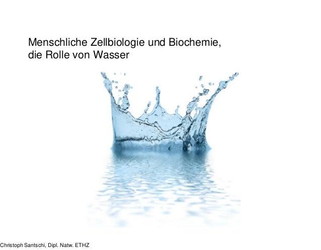 Menschliche Zellbiologie und Biochemie, die Rolle von Wasser Christoph Santschi, Dipl. Natw. ETHZ