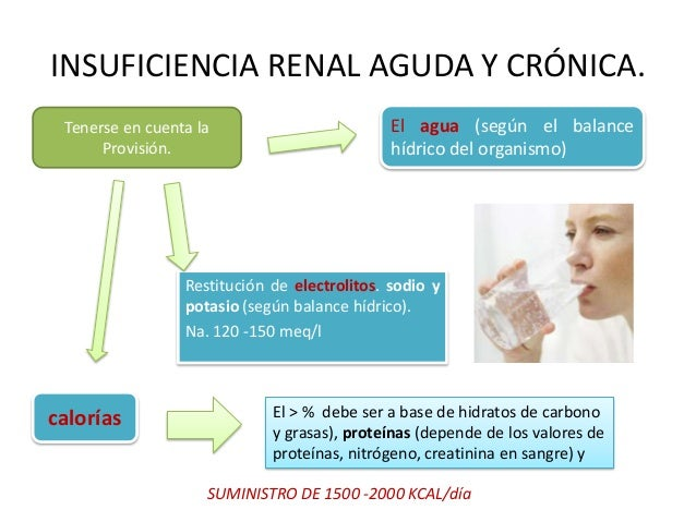 Dieta endocrino metab lica for Alimentos prohibidos para insuficiencia renal