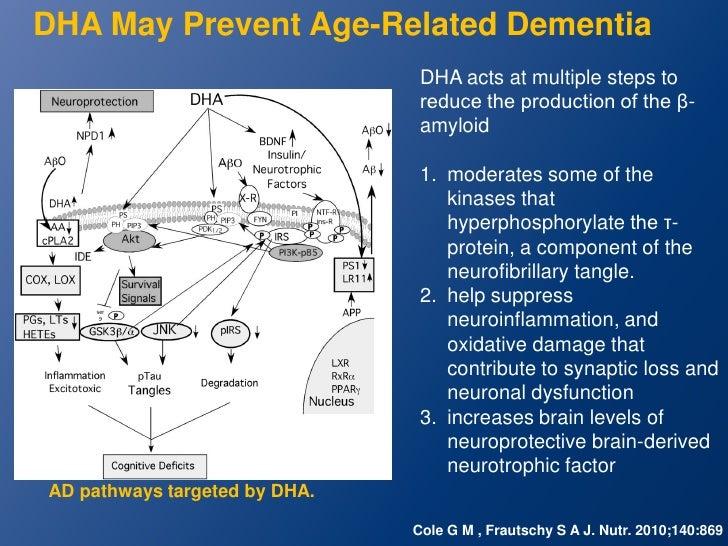 Memory improvement diet picture 5