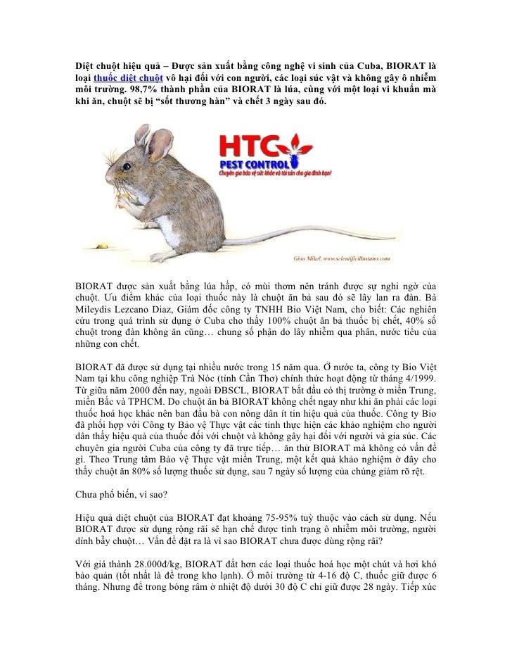 Diệt chuột hiệu quả – Được sản xuất bằng công nghệ vi sinh của Cuba, BIORAT làloại thuốc diệt chuột vô hại đối với con ngư...