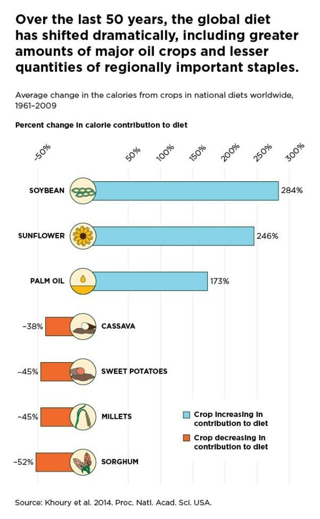 Composition of the global diet and calorie contribution from different crops