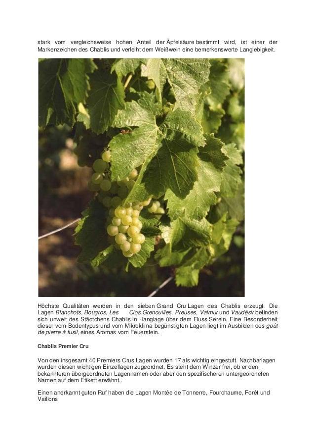 stark vom vergleichsweise hohen Anteil der Äpfelsäure bestimmt wird, ist einer der Markenzeichen des Chablis und verleiht ...