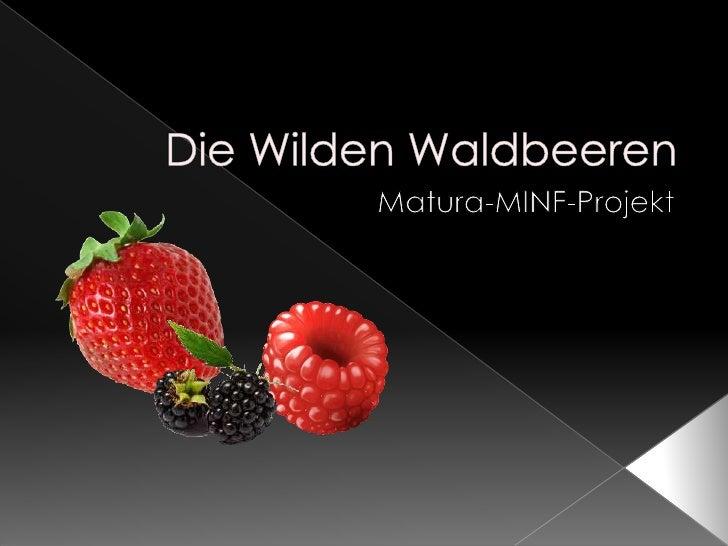 Die Wilden Waldbeeren<br />Matura-MINF-Projekt<br />