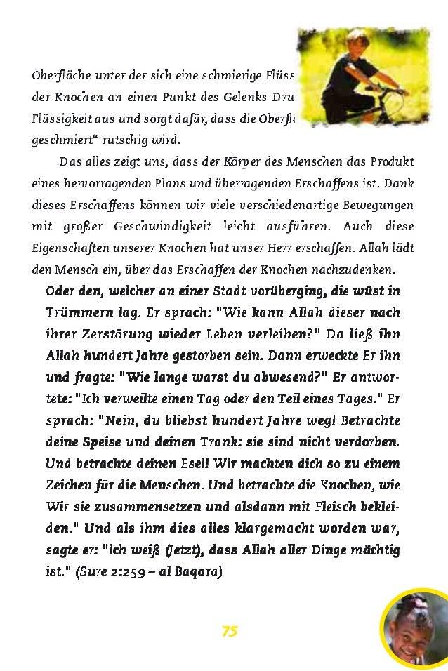 Charmant Leben Und Nicht Lebende Dinge Einer Tabelle Pdf ...