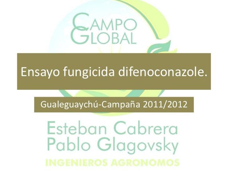 Ensayo fungicida difenoconazole.   Gualeguaychú-Campaña 2011/2012