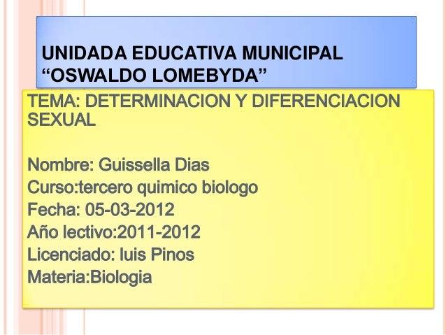 "UNIDADA EDUCATIVA MUNICIPAL ""OSWALDO LOMEBYDA""TEMA: DETERMINACION Y DIFERENCIACIONSEXUALNombre: Guissella DiasCurso:tercer..."