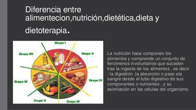 Diferencia entre alimentecion nutrici n diet tica dieta y for Diferencia entre yeso y escayola