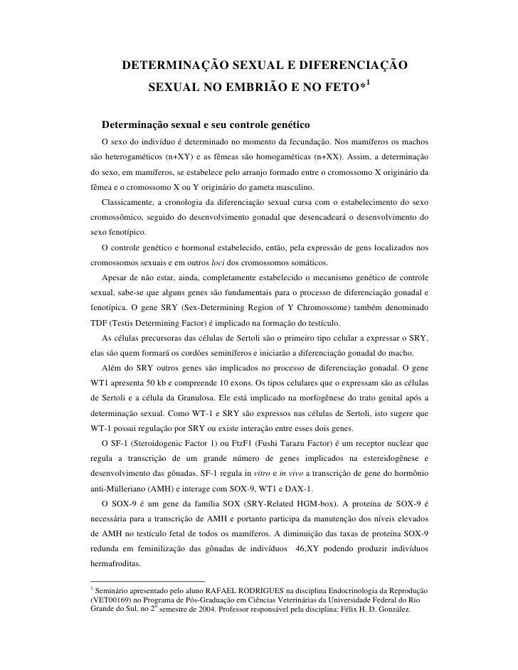 DETERMINAÇÃO SEXUAL E DIFERENCIAÇÃO                   SEXUAL NO EMBRIÃO E NO FETO*1    Determinação sexual e seu controle ...