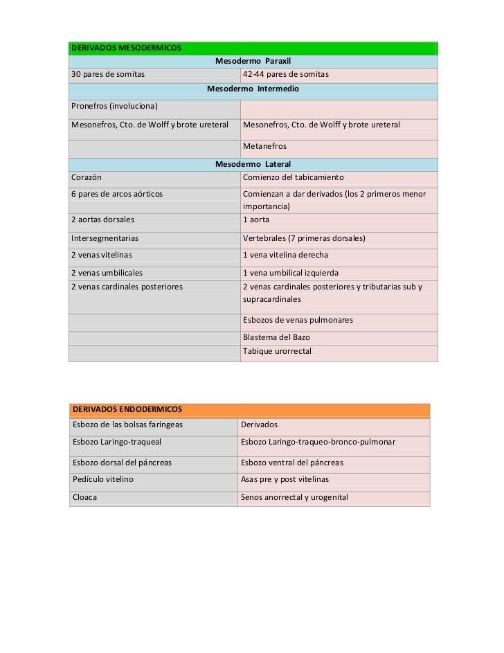 Diferencias entre cuarta y quinta semana Slide 2