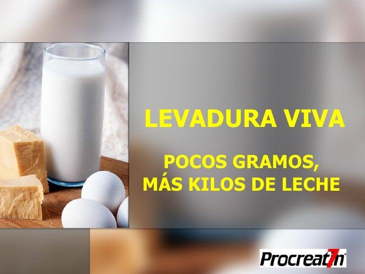 LEVADURA VIVA POCOS GRAMOS, MÁS KILOS DE LECHE