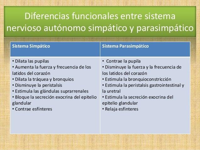 Resultado de imagen para comparacion del sistema simpatico y parasimpatico