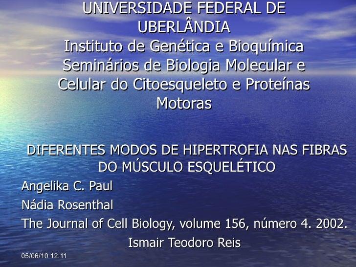 UNIVERSIDADE FEDERAL DE UBERLÂNDIA Instituto de Genética e Bioquímica Seminários de Biologia Molecular e Celular do Citoes...