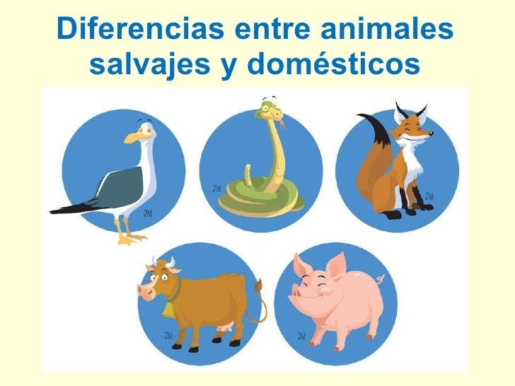 Diferencias entre animales salvajes y domésticos
