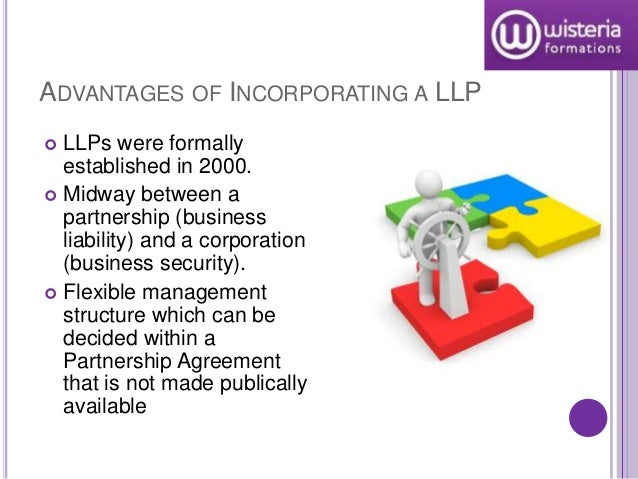 Explain the roles of limited liability partnerships and corporations