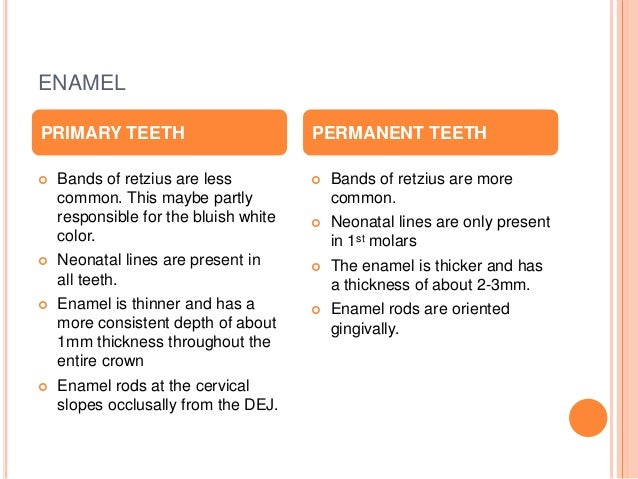 Differences between primary and permanent teeth for What is the difference between space and place