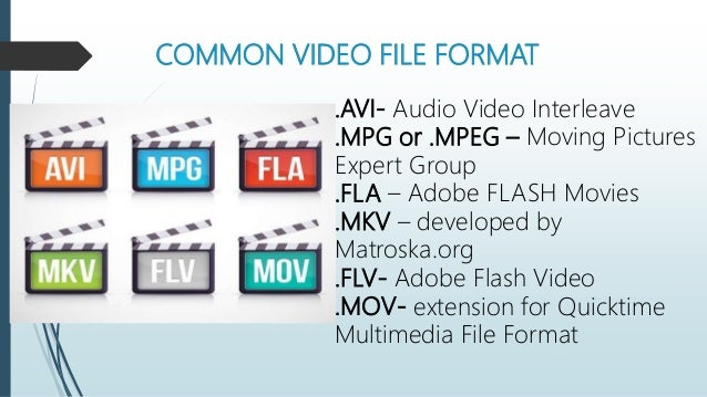 Computer File Format/Extension