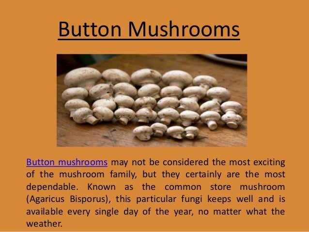 different types of mushrooms essay Papers - different types of mushrooms title length color rating : essay on toadstool- amanita muscaria - everyone knows toadstools to be the mushrooms that the smurfs use to live up under.