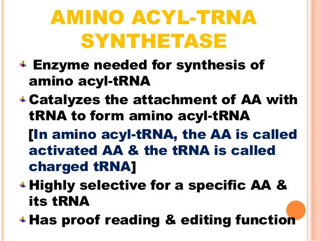 """B) PEPTIDE BOND FORMATION  We know, """"P"""" site positioned against initiating codon (AUG) is already attached with met-tRNA ..."""