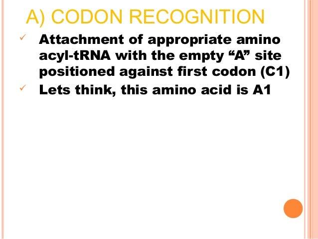 CONTD Phosphorylation:  Addition of phosphate group to a protein (esp. on serine, threonine & tyrosine residue)  Also ca...