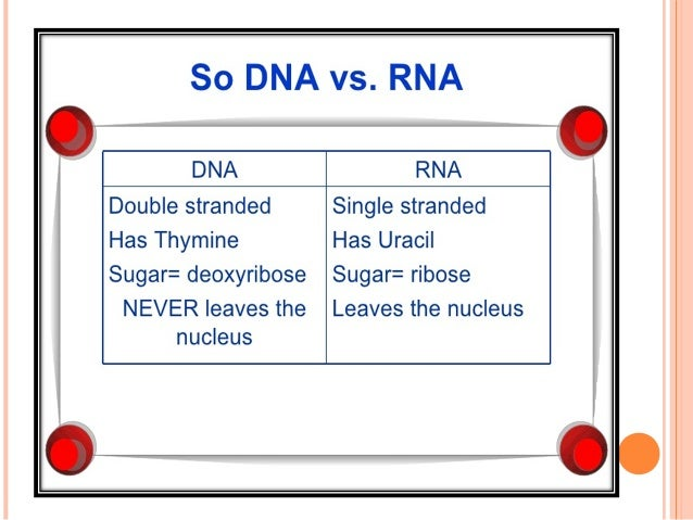 REMEMBER, THREE MAIN TYPES OF RNA FOR TRANSLATION