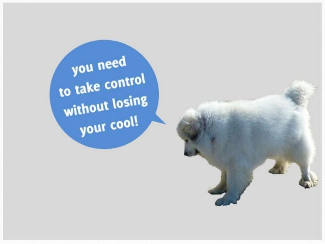 You need to take control without losing your cool!