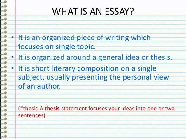 Reflective essay on first year of university
