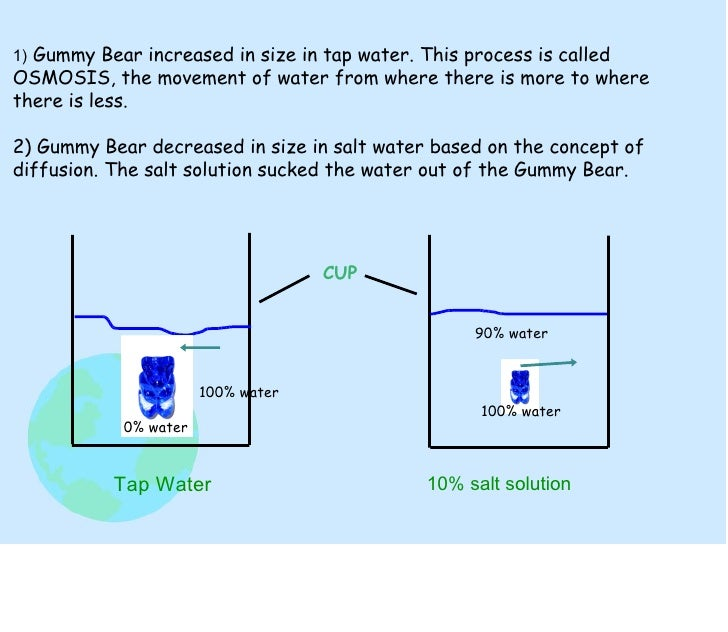 a laboratory experiment on the two biological processes of diffusion and osmosis The term osmosis describes the movement of a solvent through a semipermeable membrane if you can post more information about facilitated diffusion and simple.