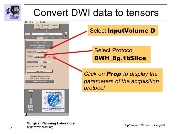Diffusion Tensor Imaging Analysis-3749