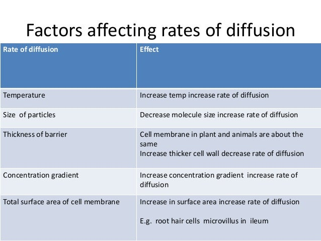 how do different factors affect osmosis essay Biology formal lab report on osmosis and  different factors that can affect the rate of  to show how one variable can affect the rate at which osmosis.