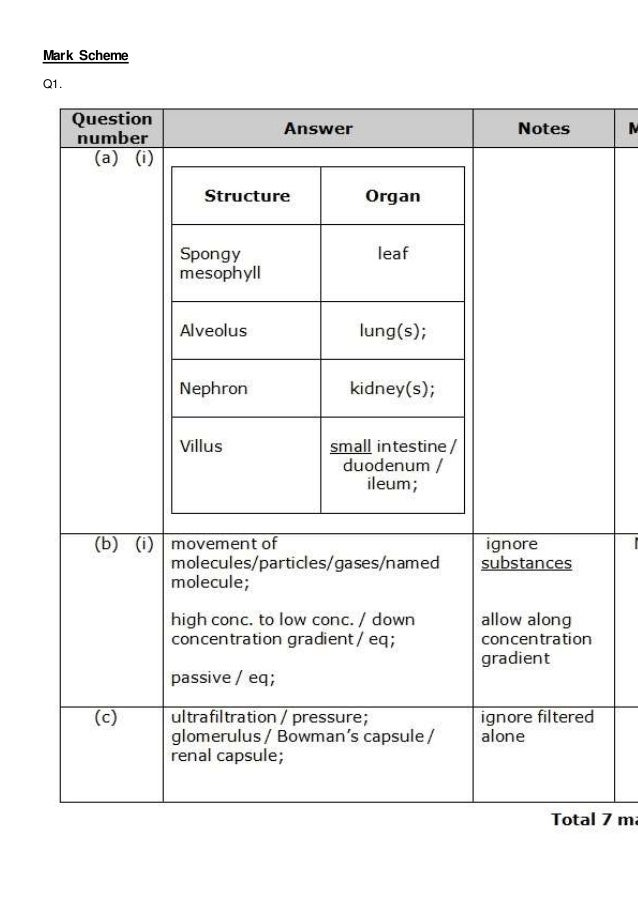 Transport in Cells POGIL Flashcards   Quizlet besides Cell Transport Worksheet Answers – Fronteirastral additionally  also Diffusion  osmosis  and active transport practice questions as well Cell Transport Review Worksheet Answers   Winonarasheed additionally Cell Memne and Transport Worksheet Answers Cell Memne further This worksheet was written for my Biology I cl  It is a 4 page together with Cell Transport   YouTube as well Cell Transport Worksheet Answers   Homedressage in addition Cell Transport Worksheet Answers The best worksheets image besides Cell Transport Graphic Organizer by Biology Roots   TpT in addition Active and pive transport worksheet key   Active and Pive furthermore  also Transport In Cells Worksheet Answers Inspirational Cell Concept Map moreover Definition of Transport Through The Cell Memne   Chegg moreover Transport in Cells POGIL Flashcards   Quizlet. on transport in cells worksheet answers