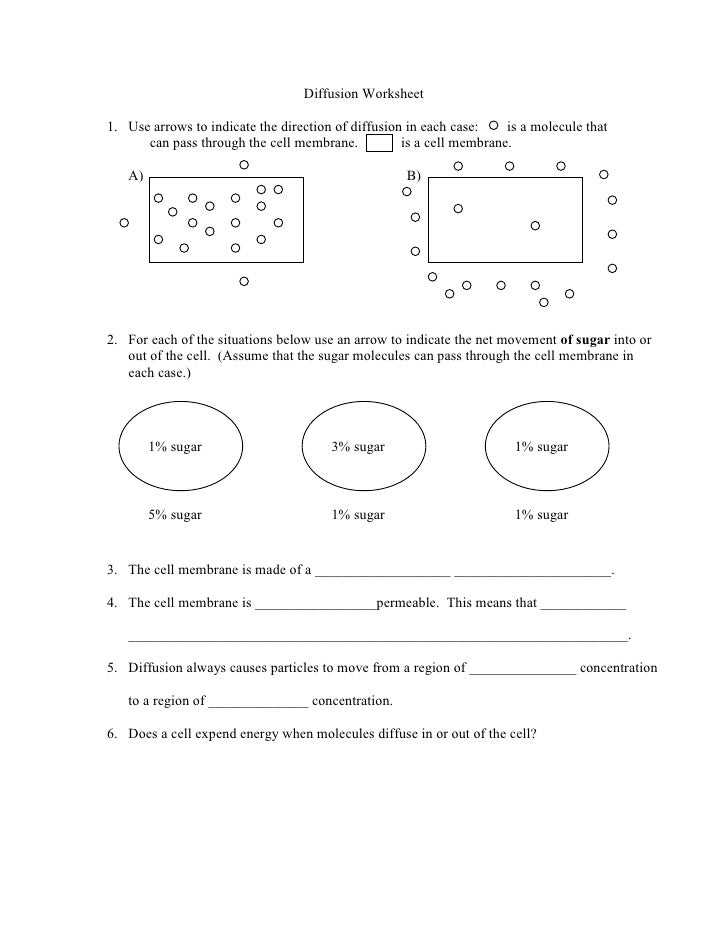 Diffusion student worksheet
