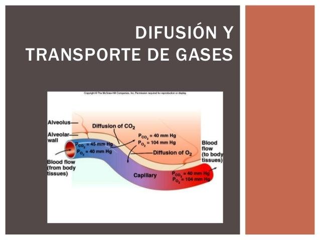 DIFUSIÓN Y TRANSPORTE DE GASES