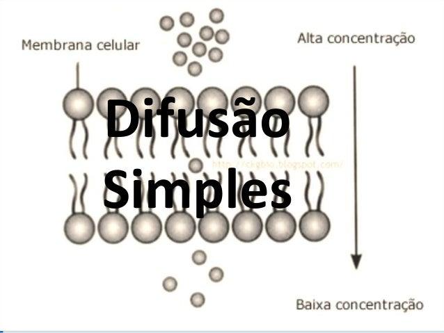 DifusãoSimples