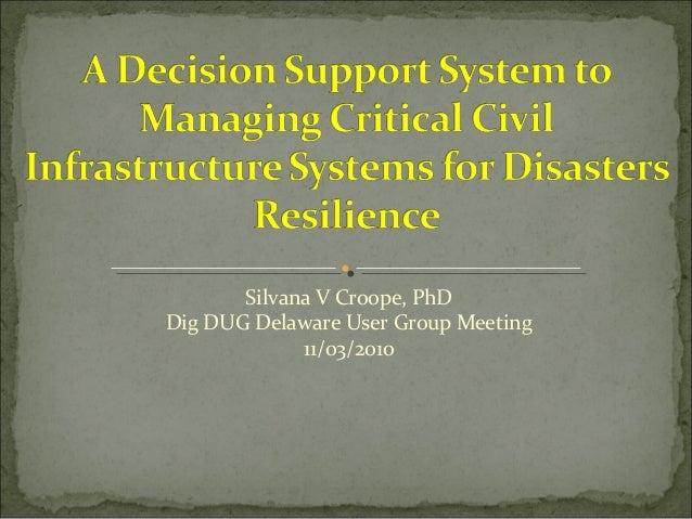 Silvana V Croope, PhD Dig DUG Delaware User Group Meeting 11/03/2010