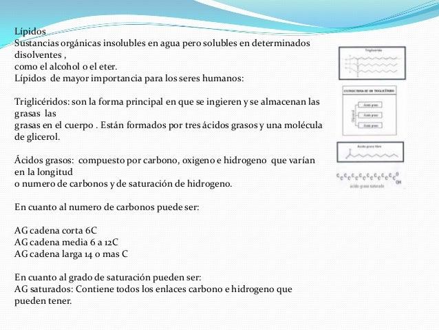 LípidosSustancias orgánicas insolubles en agua pero solubles en determinadosdisolventes ,como el alcohol o el eter.Lípidos...