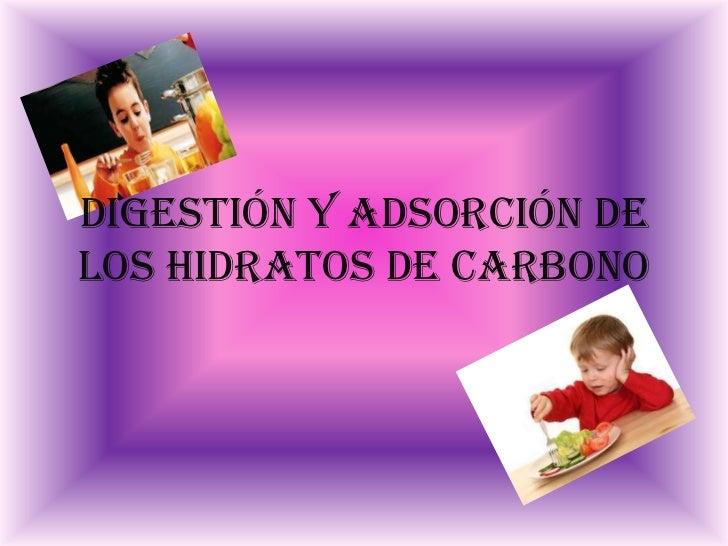 DIGESTIÓN Y ADSORCIÓN DELOS HIDRATOS DE CARBONO