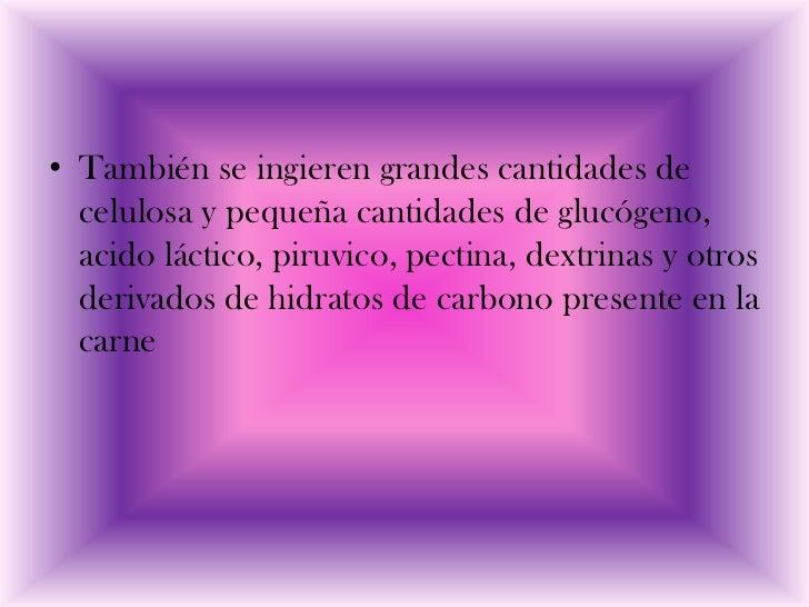 • También se ingieren grandes cantidades de  celulosa y pequeña cantidades de glucógeno,  acido láctico, piruvico, pectina...