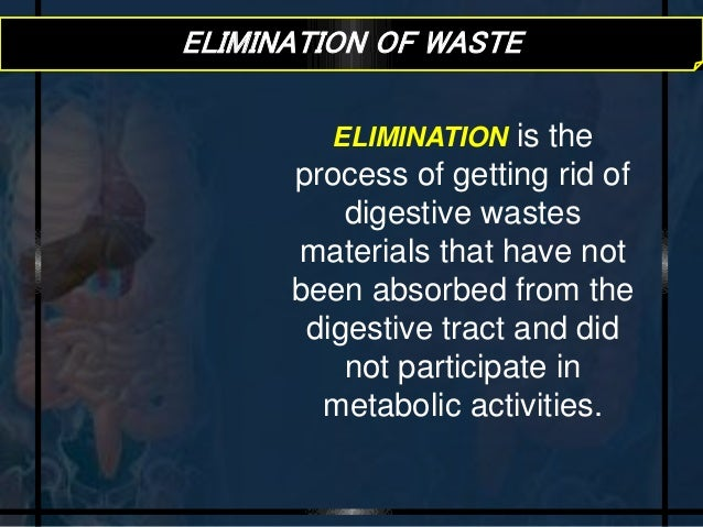 Getting Rid Of Undigested Food Is Called