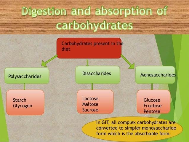 digestion and absorption of carbohydrates biology essay This review summarizes information regarding digestion and absorption of carbohydrates in cultivated fish although numerous investigations on digestion of starch and other carbohydrates in fish have been published brazilian journal of biology, 2017, 0crossref.