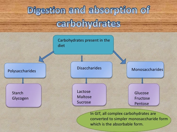 digestion-and-absorption-of-carbohydrates-4-728.jpg?cb=1342257320