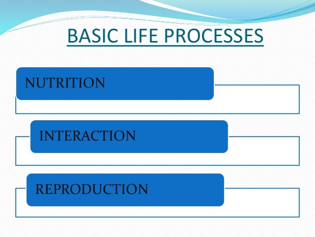 BASIC LIFE PROCESSES  NUTRITION  INTERACTION  REPRODUCTION