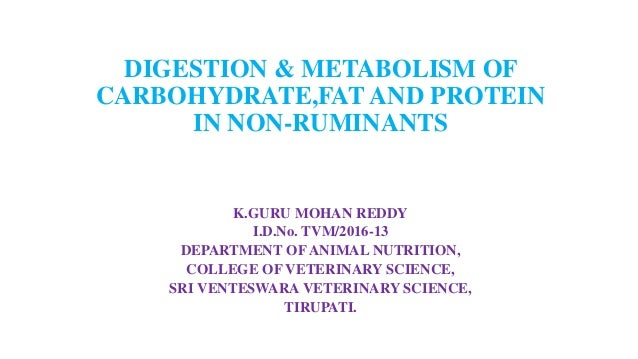 DIGESTION & METABOLISM OF CARBOHYDRATE,FAT AND PROTEIN IN NON-RUMINANTS K.GURU MOHAN REDDY I.D.No. TVM/2016-13 DEPARTMENT ...