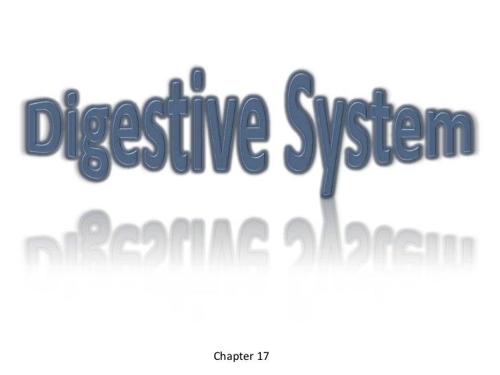 Digestive System<br />Chapter 17 <br />