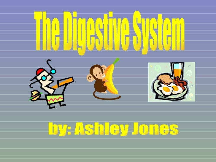 The Digestive System by: Ashley Jones