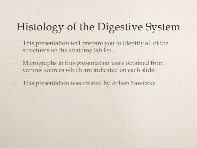 Histology of the Digestive System   This presentation will prepare you to identify all of the  structures on the anatomy ...