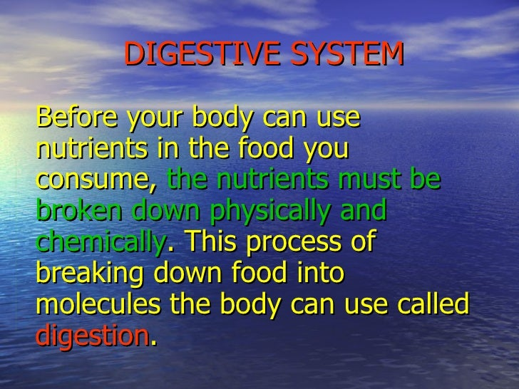 DIGESTIVE SYSTEM Before your body can use nutrients in the food you consume,  the nutrients must be broken down physically...
