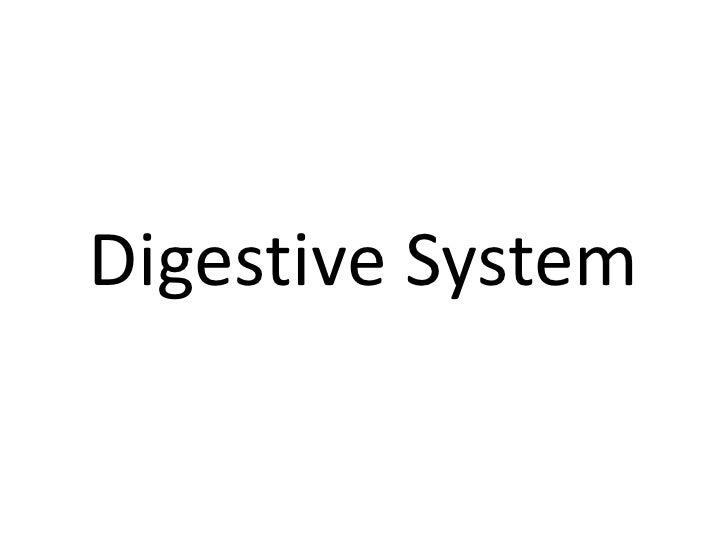 Digestive System<br />