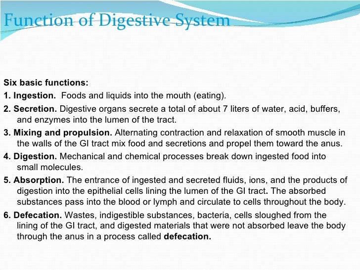 functions in digestion essay Free essays, free sample essays and free example essays on digestive system topics are plagiarized order a custom written essay at effectivepaperscom now: effectivepaperscom is professional essay writing service which is committed to write great-quality custom essays, term papers, thesis papers, research papers.