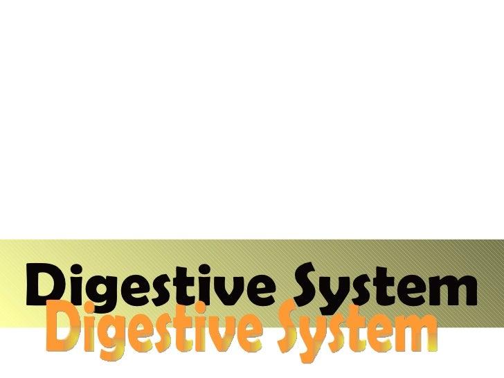 Digestive System Digestive System
