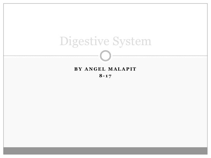 By Angel Malapit<br />8-17<br />Digestive System<br />